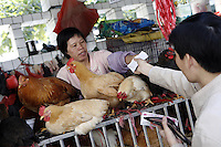 A woman sells chickens in the Futian agriculture and produce market.<br />