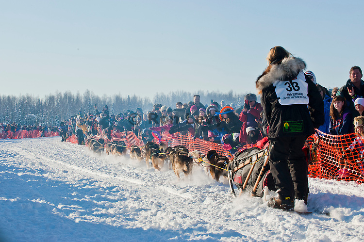 Iditarod musher Anna Berington, rookie, leaves the gate at the Restart of Iditarod 2012, Willow, Alaska, March 4, 2012