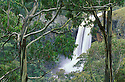 Australia, NSW; Ebor Falls in the Great Dividing Range