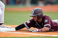 Texas A&M Aggies shortstop Mikey Reynolds #16 dives back to first during the NCAA baseball game against the Texas Longhorns on April 28, 2012 at UFCU Disch-Falk Field in Austin, Texas. The Aggies beat the Longhorns 12-4. (Andrew Woolley / Four Seam Images)..