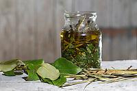 Balsam-Pappel, Balsampappel, Rinde, Borke und Blätter werden in Öl eingelegt, Balsampappelöl, Populus spec., balsam poplar, bark, rind and leaf, leaves on oil