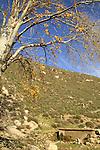 Israel, Ein Alva in the Upper Galilee