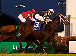 November 17, 2018 : Mr. Misunderstood (jockey Florent Geroux) wins the G3 River City Handicap at Churchill Downs, Louisville, Kentucky. Owner Flurry Racing Stables LLC (Staton C. Flurry), trainer Brad H. Cox. By Archarcharch x Jodys Deelite (Afternoon Deelites) Mary M. Meek/ESW/CSM