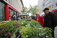 Gross-Gerau 28.04.2017: Frühlingserwachen in der Innenstadt Groß-Gerau<br /> Jede Menge Grün auch an den Verkaufsständen<br /> Foto: Vollformat/Marc Schüler, Schäfergasse 5, 65428 R'heim, Fon 0151/11654988, Bankverbindung KSKGG BLZ. 50852553 , KTO. 16003352. Alle Honorare zzgl. 7% MwSt.