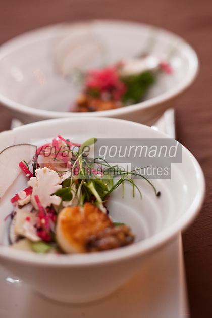 Europe/France/Poitou-Charentes/79/Deux-Sèvres/Niort: Saint-Jacques poêllées, salade de betterave et concassé de noisette - recette de David Seguin du  Restaurant: L'Adress