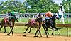 Midnight's Fantasy winning at Delaware Park on 7/24/17