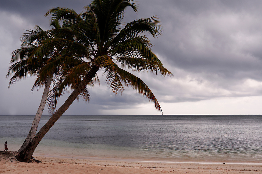 A small boy stands at the base of two palm trees on Laura beach, Majuro Atoll, looking out to sea.