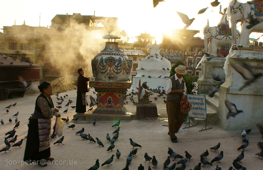 old woman feeding doves on Boudha stupa in Kathmandu, Nepal.Boudhanath near Kathmandu is one of the most holy places of buddhist worship and pilgrimage. The ancient Stupa is one of the largest in the world.