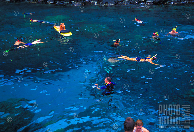 Snorkeling and swimming at Kealakekua bay, south of Kona, Big island of Hawaii