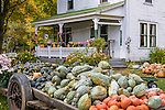 Autumn harvest at a farm stand in Bethel, ME