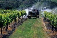 Océanie/Australie/Australie Méridionale/Barossa Valley : Traitement de la vigne