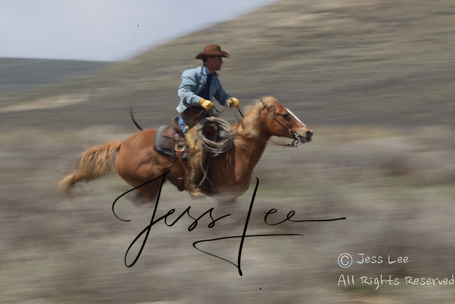 Cowboy horseman running fast Cowboys working and playing. Cowboy Cowboy Photo Cowboy, Cowboy and Cowgirl photographs of western ranches working with horses and cattle by western cowboy photographer Jess Lee. Photographing ranches big and small in Wyoming,Montana,Idaho,Oregon,Colorado,Nevada,Arizona,Utah,New Mexico.