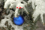 A Holiday Ornament hanging on a evergreen Christmas Tree