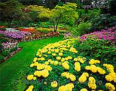 Tom Mackie, FLOWERS, photos, The Sunken Garden, Butchart Gardens, Victoria, Vancouver Island, British Columbia, Canada, GBTM070310-1,#F# Garten, jardín