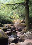 Europe, FRA, France, Brittany, Finistere, Huelgoat, Typical Landscape, Forest, Brook, Rocks, Water, Tree....[ For each utilisation of my images my General Terms and Conditions are mandatory. Usage only against use message and proof. Download of my General Terms and Conditions under http://www.image-box.com or ask for sending. A clearance before usage is necessary...Material is subject to royalties. Each utilisation of my images is subject to a fee in accordance to the present valid MFM-List...Contact | archive@image-box.com | www.image-box.com ]