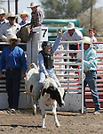 Conner Nelson of Fallon rides in the Junior boys calf riding event at the Fallon Junior Rodeo.  Photo by Tom Smedes.