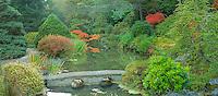 Japanese Garden in autumn, Washington