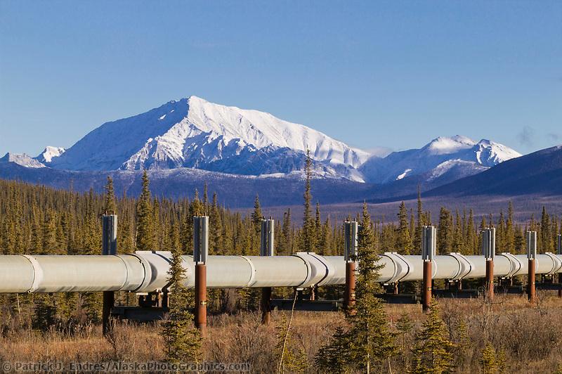 Trans Alaska Oil Pipeline crosses the tundra of the Brooks range, Alaska