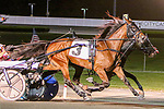 AUGUST 31, 2019 : Golden Tricks #3, driven by Andy Miller, runs down Quincy Blue Chip to win the $124,334 Hudson Trot for 3 year old fillies, at Yonkers Raceway, on August 31, 2019 in Yonkers, NY.  Sue Kawczynski_ESW_CSM