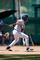 Detroit Tigers Sergio Alcantara (3) at bat during an Instructional League game against the Atlanta Braves on October 10, 2017 at the ESPN Wide World of Sports Complex in Orlando, Florida.  (Mike Janes/Four Seam Images)