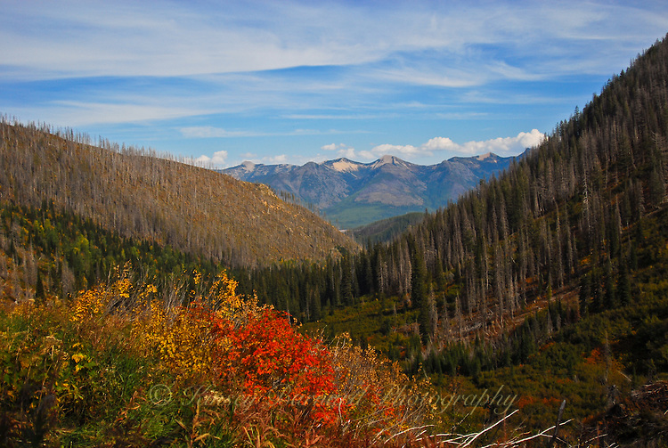 View from Clayton lake trail to the Great Bear Wilderness