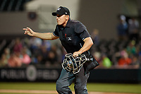 Umpire J.C. Velez signals fair ball during a Florida State League game between the Tampa Tarpons and Lakeland Flying Tigers on April 5, 2019 at Publix Field at Joker Marchant Stadium in Lakeland, Florida.  Lakeland defeated Tampa 5-3.  (Mike Janes/Four Seam Images)
