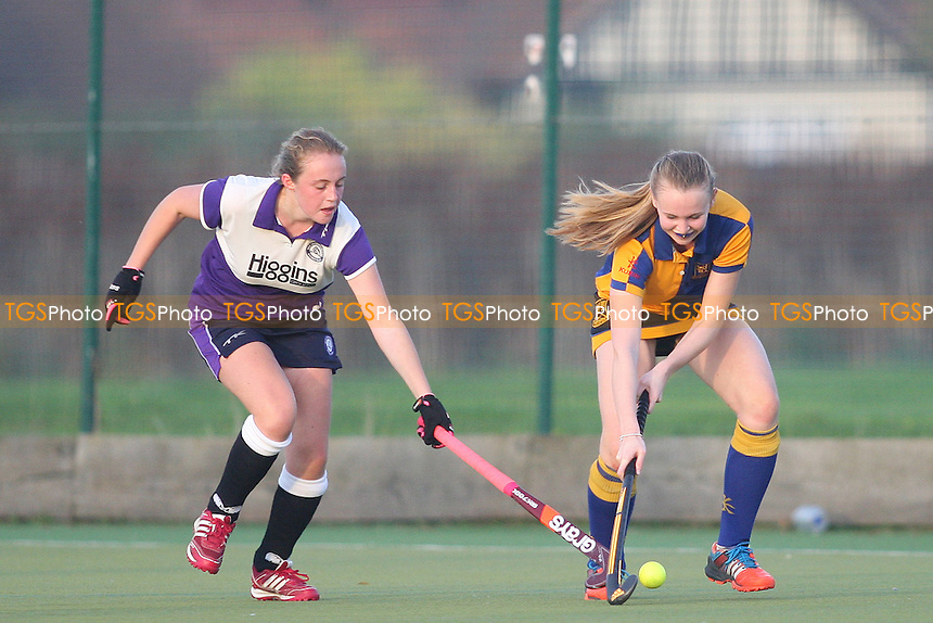 Upminster HC Ladies vs Old Loughtonians HC Ladies 2nd XI, East League Hockey at the Coopers Company and Coborn School, Upminster, England on 31/10/2015