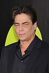 WESTWOOD, CA - JUNE 25: Benicio Del Toro  arrives at the Los Angeles premiere of 'Savages' at Mann Village Theatre on June 25, 2012 in Westwood, California.