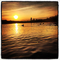 The sun rises over the Schuylkill River and the Philadelphia skyline while geese swim in the river on January 9, 2013.