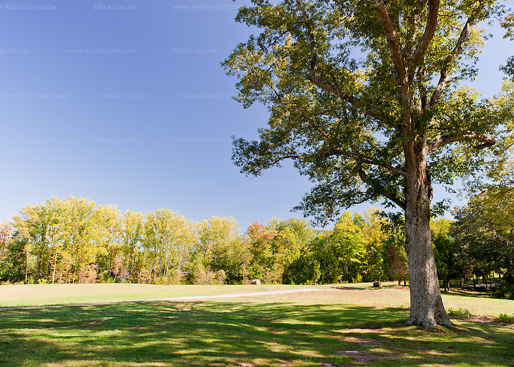 Annefield Plantation sits amid  neatly trimmed and cared-for lawns and fields.