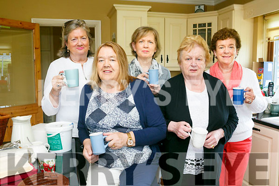 At the Tea Day at  Churchill on Sunday in Aid of Motor Neurone Disease were Tess Burke, Patricia O Mahony,, Margaret O'Sullivan, Majella Griffin and Ann Cotter
