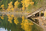 Idaho,Silver Valley,  Rose Lake. Reflections in the  water with autumn colors. An old log launch for sliding logs into the river for transport on the right.