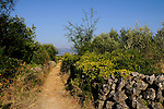 Linardici, Steinmauer, stone-wall. Krk Island, Dalmatia, Croatia. Insel Krk, Dalmatien, Kroatien. Krk is a Croatian island in the northern Adriatic Sea, located near Rijeka in the Bay of Kvarner and part of the Primorje-Gorski Kotar county. Krk ist mit 405,22 qkm nach Cres die zweitgroesste Insel in der Adria. Sie gehoert zu Kroatien und liegt in der Kvarner-Bucht suedoestlich von Rijeka.
