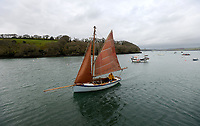 BNPS.co.uk (01202) 558833. <br /> Pic: ZacharyCulpin/BNPS<br /> <br /> An Oyster boat sails on the picturesque The Fal estuary.<br /> <br /> An oyster fisherman is launching his own 'micro-hatchery' in a bid to restore the UK's dwindling stocks of the shellfish.<br /> <br /> Chris Ranger, 44, runs Britain's last natural oyster fishery on the River Fal in Cornwall.<br /> <br /> The site has been a hot bed for oyster activity for thousands of years but the desireable molluscs are now on the verge of vanishing there after years of overfishing.<br /> <br /> Mr Ranger is converting one of his units into a state-of-the art breeding facility.
