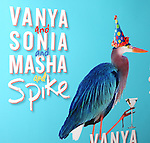 The Broadway Opening Night Performance after party for  'Vanya and Sonia and Masha and Spike' at the Gotham Hall in New York City on 3/14/2013.