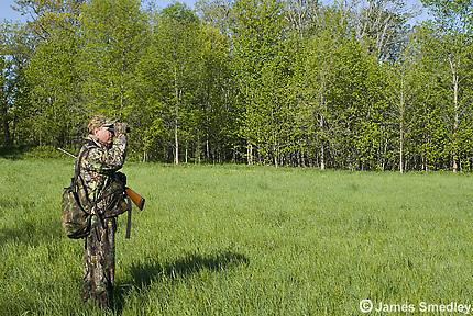 Wild turkey hunter looking through binoculars