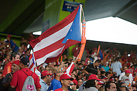 11 March 2009: A fan waives Puerto Rico national flag during the 2009 World Baseball Classic Pool D game 6 at Hiram Bithorn Stadium in San Juan, Puerto Rico. Puerto Rico wins 5-0 over the Netherlands