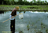 1E18-008x  Mayfly - researcher at stream floodplain habitat of endangered mayfly -  Siphlonisca aerodromia