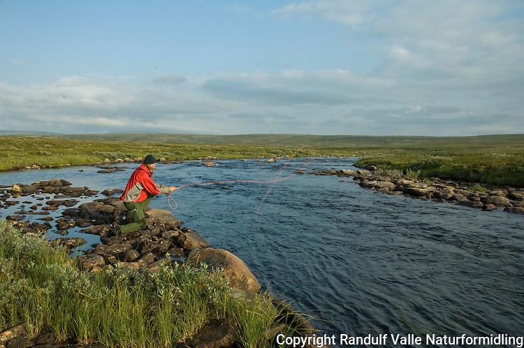 Mann fisker med flue i liten elv ---- Man fly fishing in small river