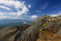 Lazy Mountain's summit provides a grand summer view of Alaska's Matanuska Susitna Valley after a strenuous hike.