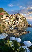 fishing village and harbour of Manarola at sunset , Cinque Terre National Park, Liguria, Italy