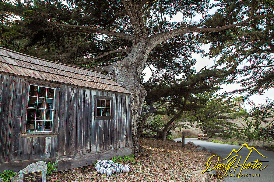 Whalers shack, Point Lobos, Carmel California
