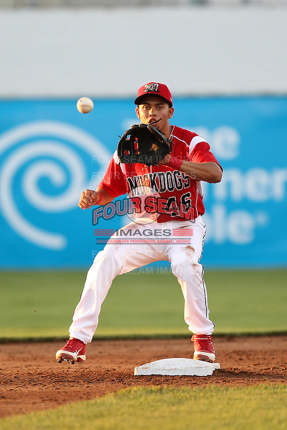 Batavia Muckdogs second baseman Breyvic Valera #46 during an exhibition game against the Newark Pilots of the Perfect Game Collegiate Baseball Lague at Dwyer Stadium on June 15, 2012 in Batavia, New York.  Batavia defeated Newark 8-0.  (Mike Janes/Four Seam Images)