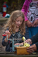 Isabel Gallagher, 8, learns how to use an apple peeler at the annual Ned Mosher Apple Butter Festival. The festival held at the Knox-Metzker log cabin on the grounds of McVay Elementary School in Westerville every year helps raise money to maintain the cabin as a teaching tool for students at the school.