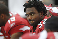 Aug 18, 2007; Glendale, AZ, USA; Arizona Cardinals running back Edgerrin James (32) on the sidelines against the Houston Texans at University of Phoenix Stadium. Mandatory Credit: Mark J. Rebilas-US PRESSWIRE Copyright © 2007 Mark J. Rebilas