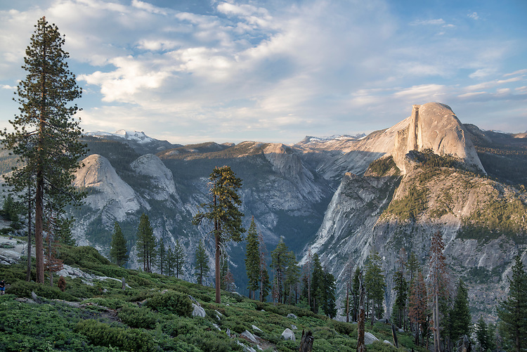 From the lush green slopes of Glacier Point, the vast panorama of Tenaya Canyon and Half Dome is on display.