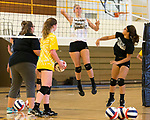 August 14, 2017- Tuscola, IL- Warrior coach Allison Yantis and players Grace Voyles, Allison Clark, and Jessie Martin run drills at the net during preseason practice at TCHS. Photo: Douglas Cottle]