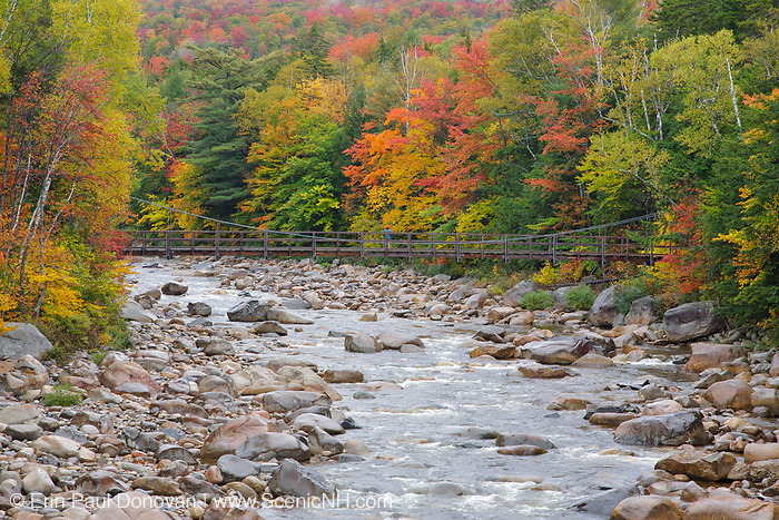 East Branch of the Pemigewasset River near the Lincoln Woods Visitor Center in Lincoln, New Hampshire USA during the autumn months.