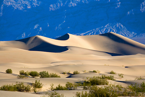 PEOPLE WALKING ALONG RIDGES OF STOVEPIPE WELLS SAND DUNES AT DEATH VALLEY NATIONAL PARK, CALIFORNIA