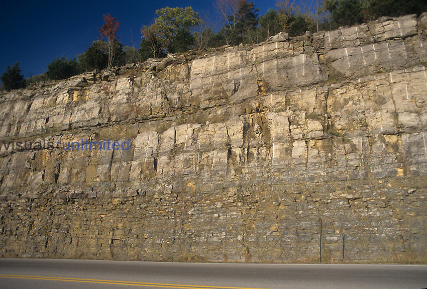 Road cut through the Ozark Mountains showing Mississippian Age rocks, Arkansas, USA.